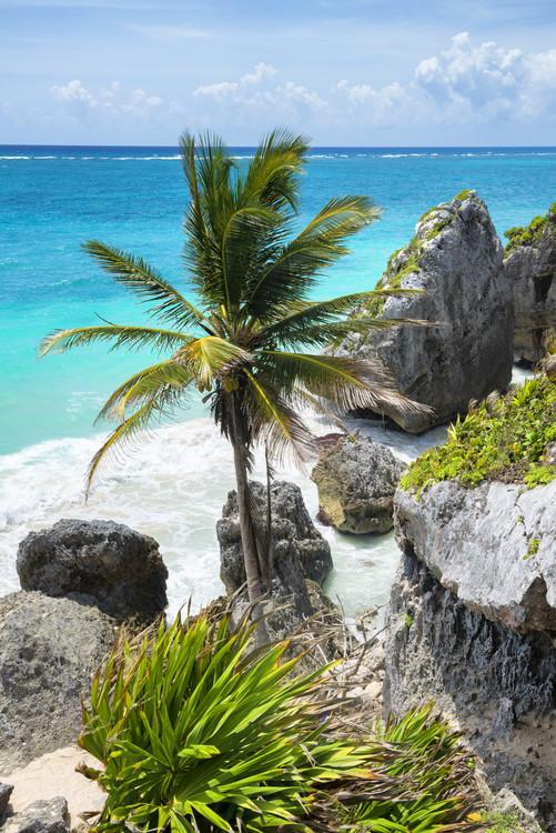 Canvas Print Caribbean Coastline