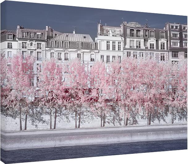 Canvas Print David Clapp - River Seine Infrared, Paris