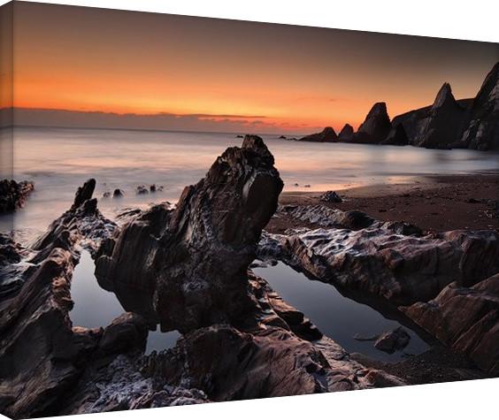 Canvas Print David Clapp - Westcombe Bay, Devon