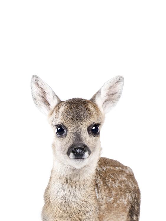 Canvas Print Deer 1