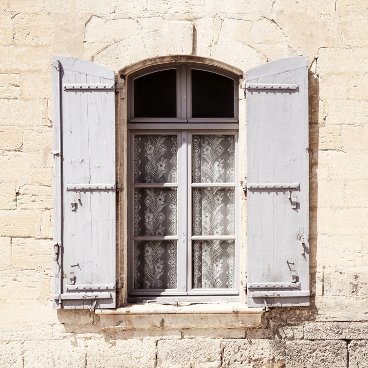 Canvas Print French Window