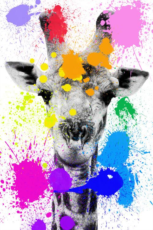 Canvas Print Giraffe