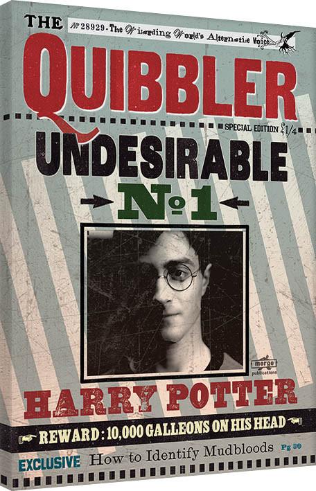 Canvas Print Harry Potter - Quibbler