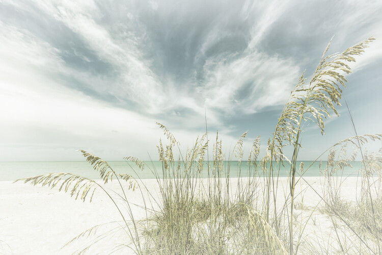 Heavenly calmness on the beach | Vintage Canvas Print