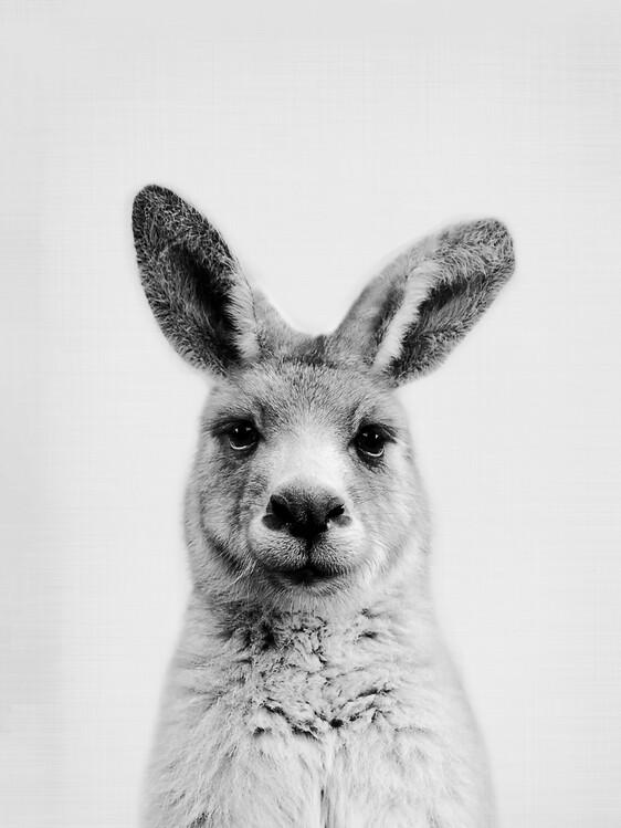 Canvas Print Kangaroo