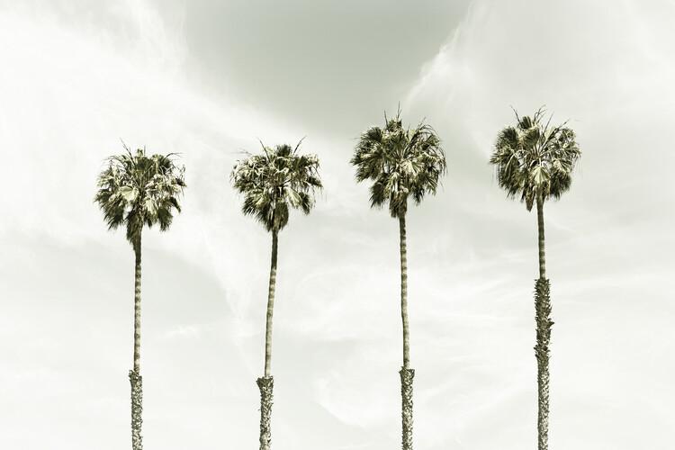 Minimalist Palm Trees | Vintage Canvas Print