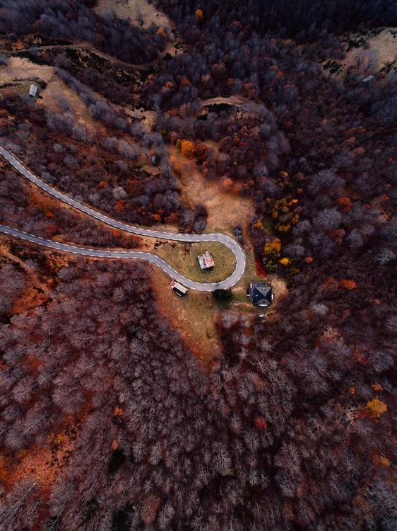 Mountain road between autumn trees Canvas Print