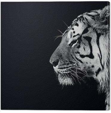 Canvas Print Nicolas Evariste - Panthera Tigris