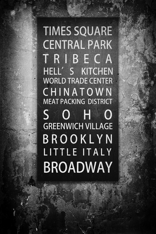 Canvas Print NYC Districts