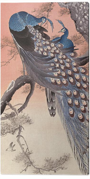 Canvas Print Ohara Koson - Two Peacocks on Tree Branch