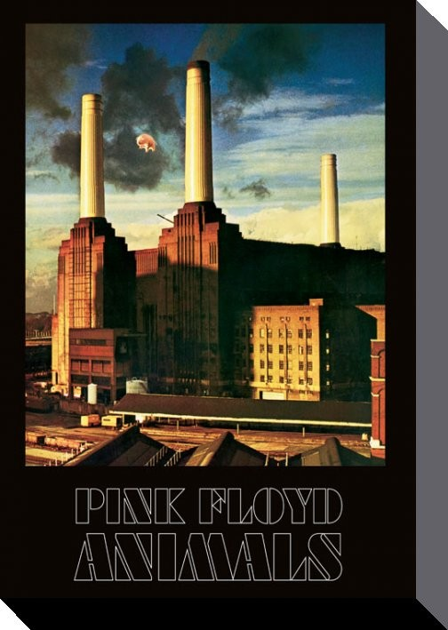 Pink Floyd - Animals Canvas Print