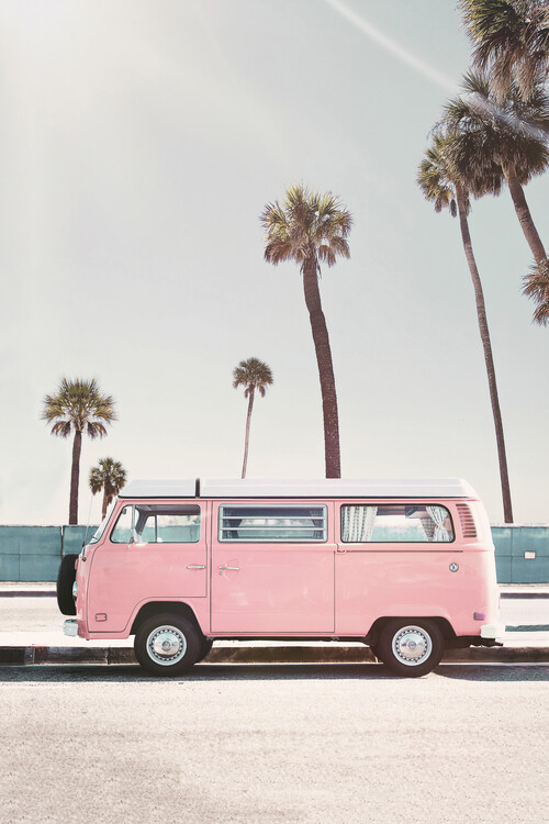 Canvas Print Pink van