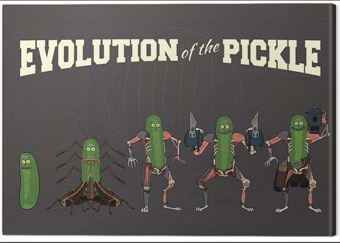 Canvas Print Rick and Morty - Evolution of the Pickle