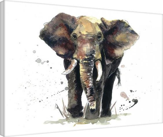 Canvas Print Sarah Stokes - Thunder