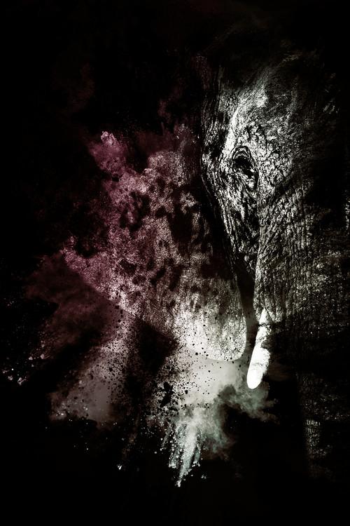 Canvas Print The Elephant