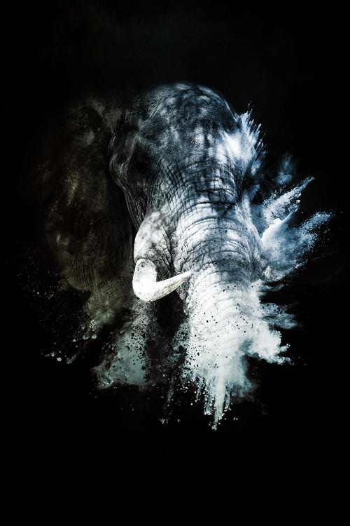 The Elephant II Canvas Print