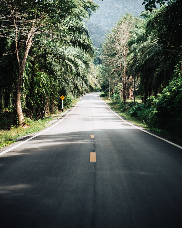Canvas Print The Good Road
