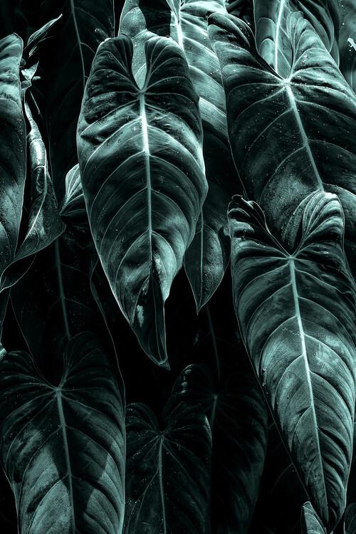The Jungle Canvas Print