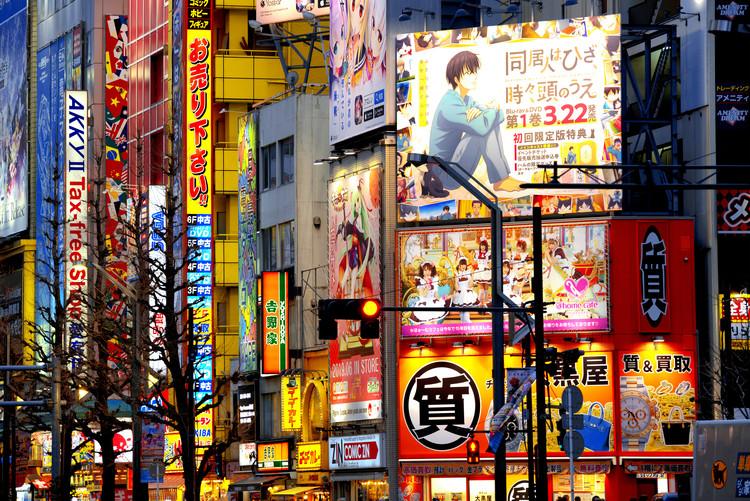 Canvas Print Tokyo Akihabara