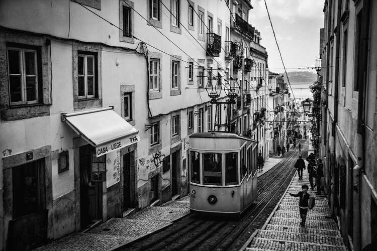 Canvas Print Tram in Lisbon