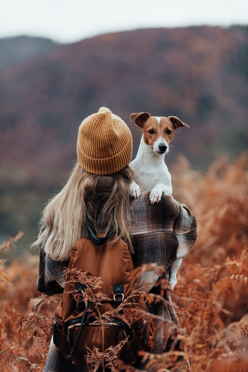 Canvas Print Woman traveling with her dog