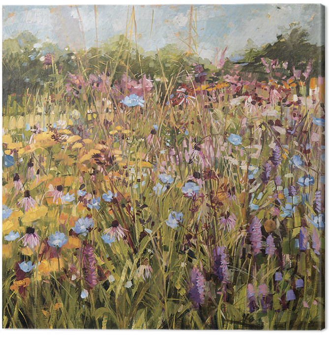 Anne-Marie Butlin - Summer Field with Scabious Canvas Print
