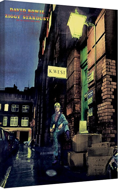 David Bowie - Ziggy Stardust Canvas Print