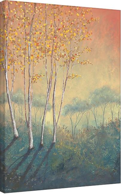 Serena Sussex - Silver Birch Tree in Autumn Canvas Print