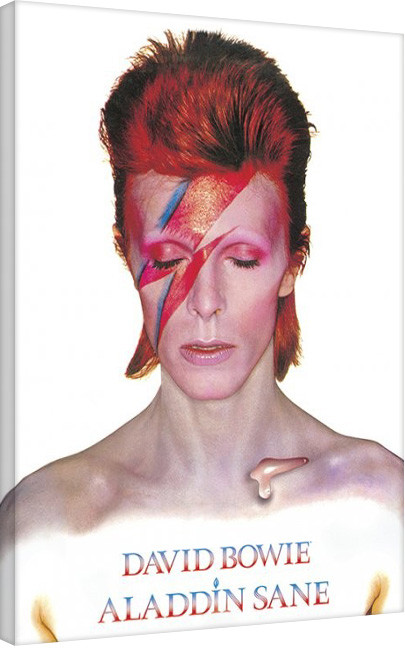 David Bowie - Aladdin Sane Canvas-taulu