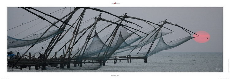 Chinese nets Reproduction
