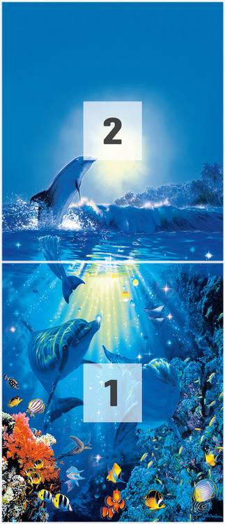 Papel de parede  DOLPHIN IN THE SUN - christian riese
