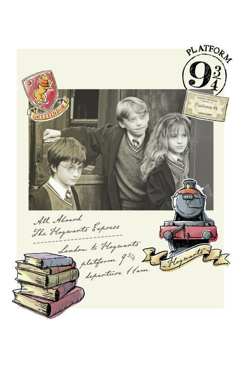 Murais de parede Harry Potter - Hermione, Harry e Rony