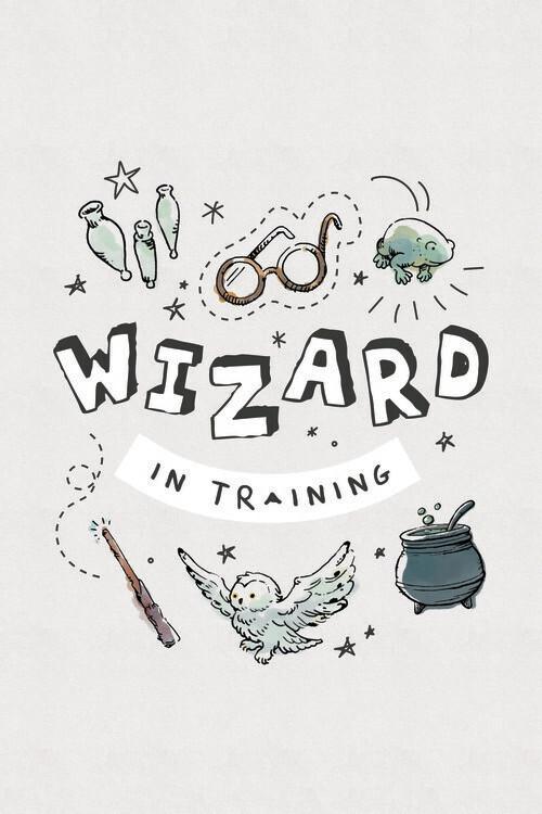 Murais de parede Harry Potter - Mago em treinamento