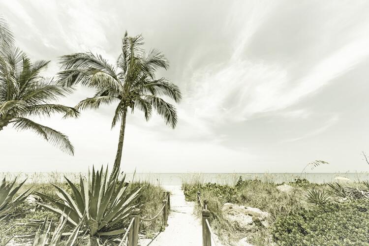 Eksklusiiviset taidevalokuvat Alone at the beach | Vintage