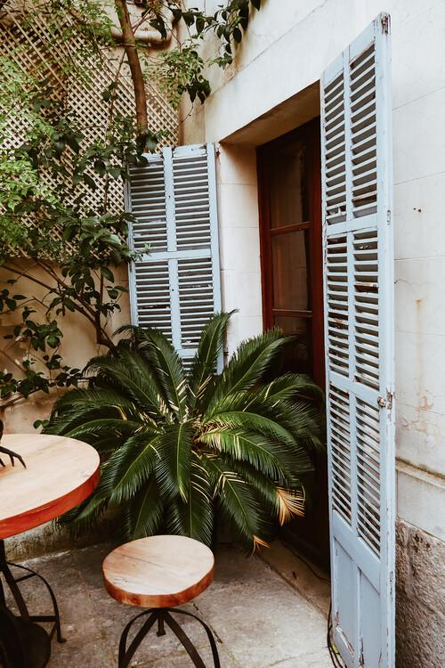 Eksklusiiviset taidevalokuvat Backyard doors