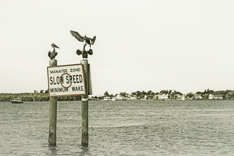 Eksklusiiviset taidevalokuvat Coastal View from Fort Myers Beach | Vintage