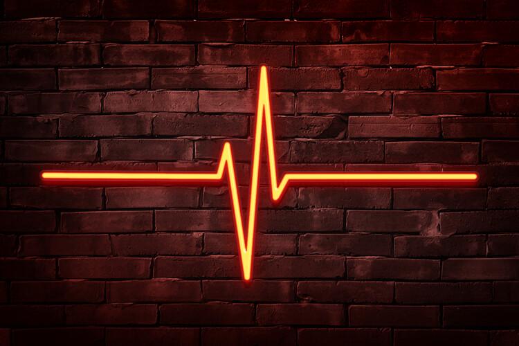 Eksklusiiviset taidevalokuvat Lifeline