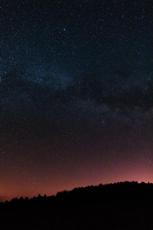 Eksklusiiviset taidevalokuvat Night photos of the Milky Way with stars and trees.