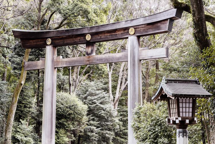 Eksklusiiviset taidevalokuvat Wooden Torii