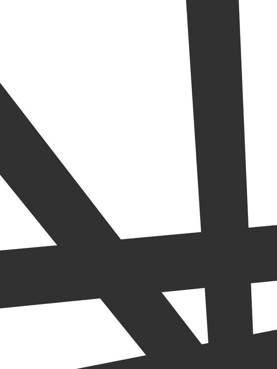 Eksklusiiviset taidevalokuvat Black lines on white