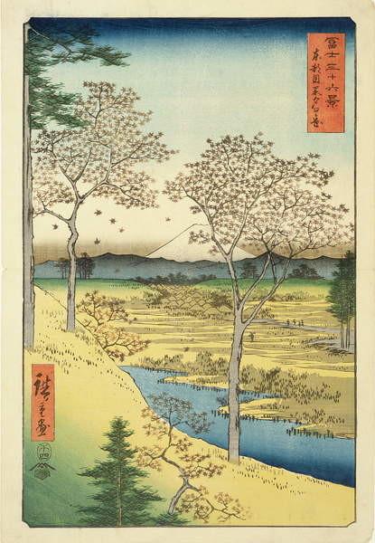 Fuji from Yuhi-Ga, Megwo, No.10 from the series '36 Views of Mt.Fuji' ('Fuji Saryu Rokkei'), Taidejuliste