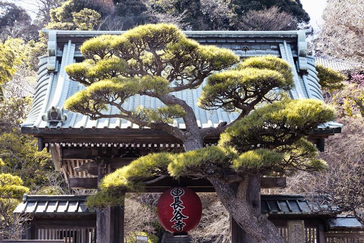 Eksklusiiviset taidevalokuvat Japonese Temple