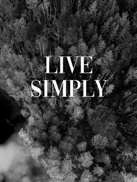 Eksklusiiviset taidevalokuvat Live simply