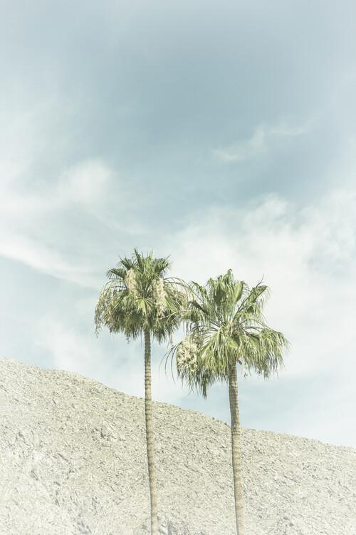 Eksklusiiviset taidevalokuvat Palm Trees in the desert | Vintage
