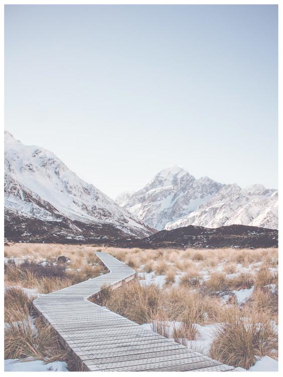 Eksklusiiviset taidevalokuvat path through wilderness