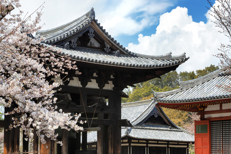 Eksklusiiviset taidevalokuvat Todai-ji Temple Nara