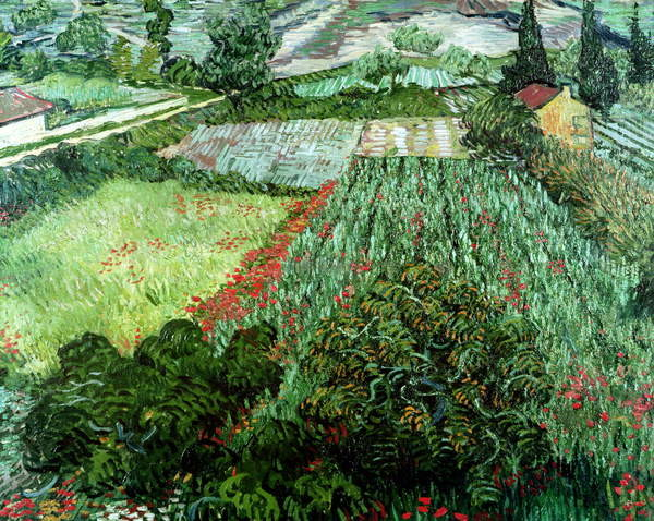 Field with Poppies, 1889 Canvas Print