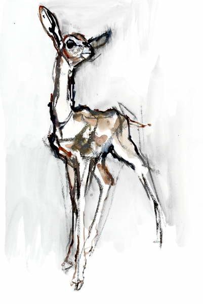 Fine Art Print Gerenuk fawn, Sarara, 2018,