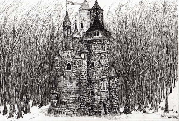 Fine Art Print  The Castle in the forest of Findhorn, 2006,