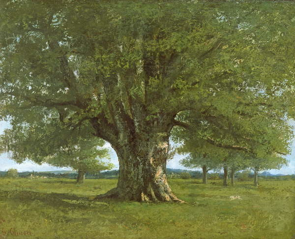 The Flagey Oak Tree, 1864 Canvas Print